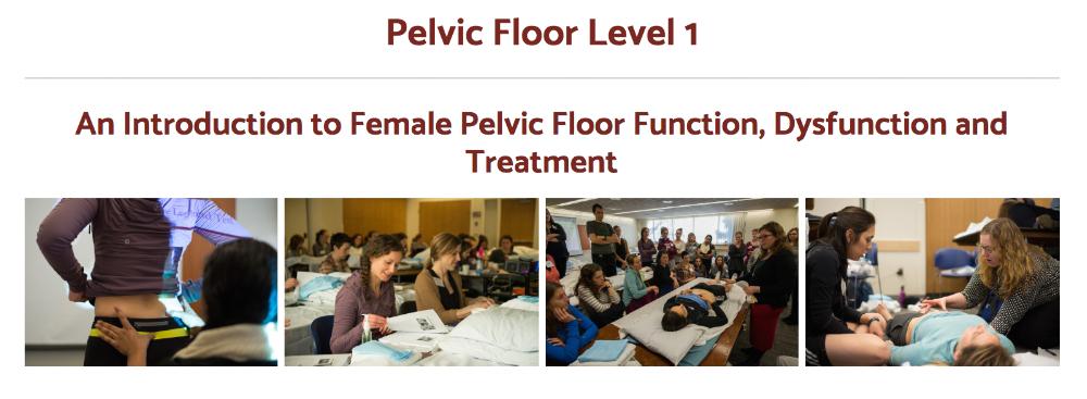 Pelvic Floor 1 through Herman and Wallace.