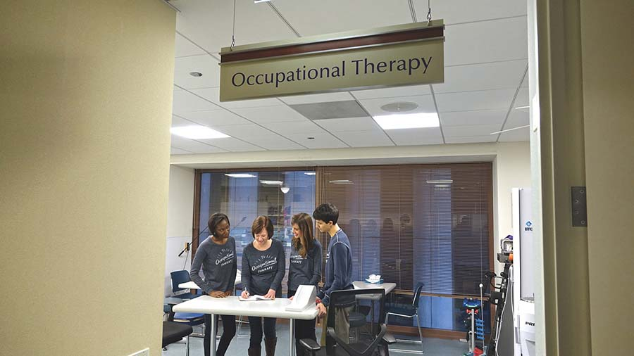 Occupational therapy team